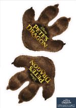 Dragon Footprints